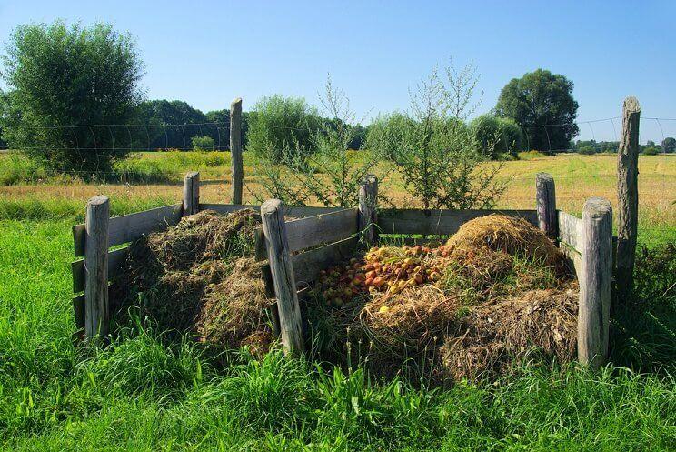 where-to-put-compost-pile.jpg