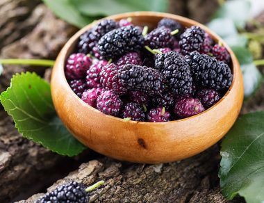 10 Wild Foods That Are Healthier Than Store-Bought Produce