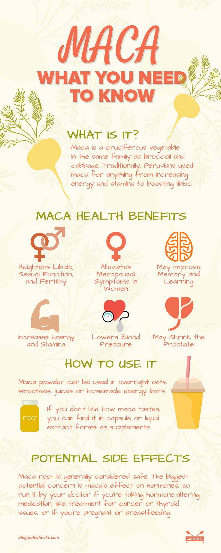 Maca what you need to know