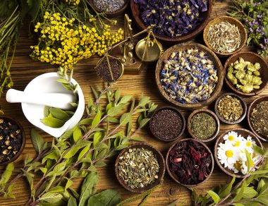 8 Herbs That Detox Your Body Naturally