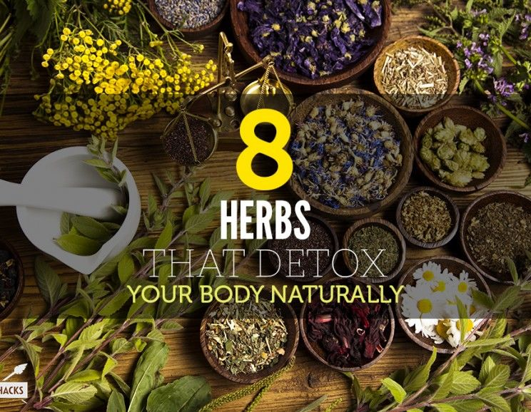 How To Cleanse Your Body Of Toxins Naturally