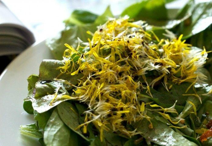dandelion-edible-694x478.jpg