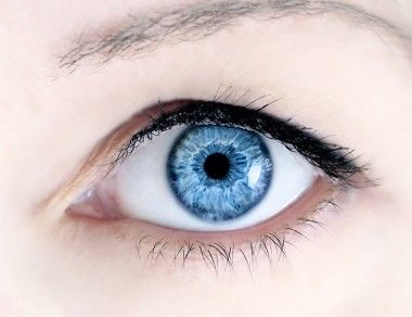 7 Paleo Foods to Protect Your Eyesight