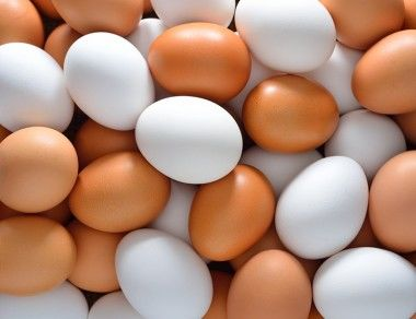 The Real Difference Between Brown Eggs vs White Eggs