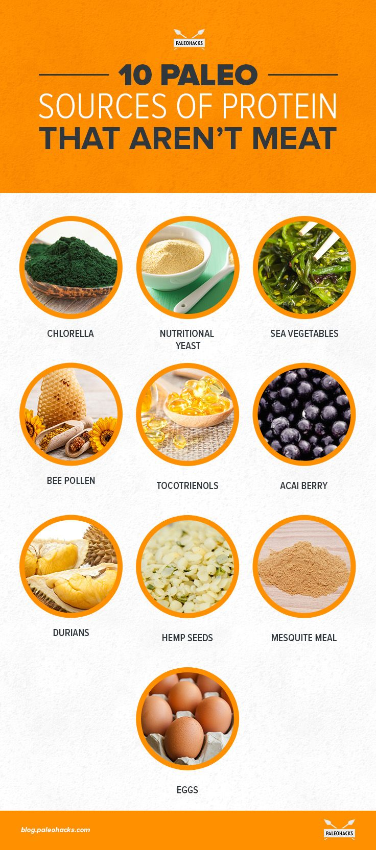 High Protein Foods In Vegetarian Diet