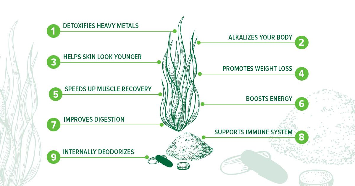 Chlorella Plant Protein What It Is Amp Health Benefits