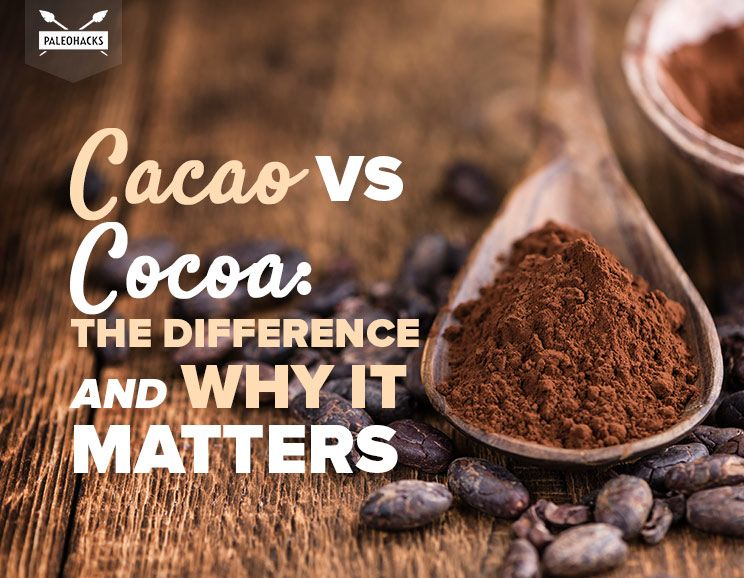 cacao vs cocoa the difference and why it matters