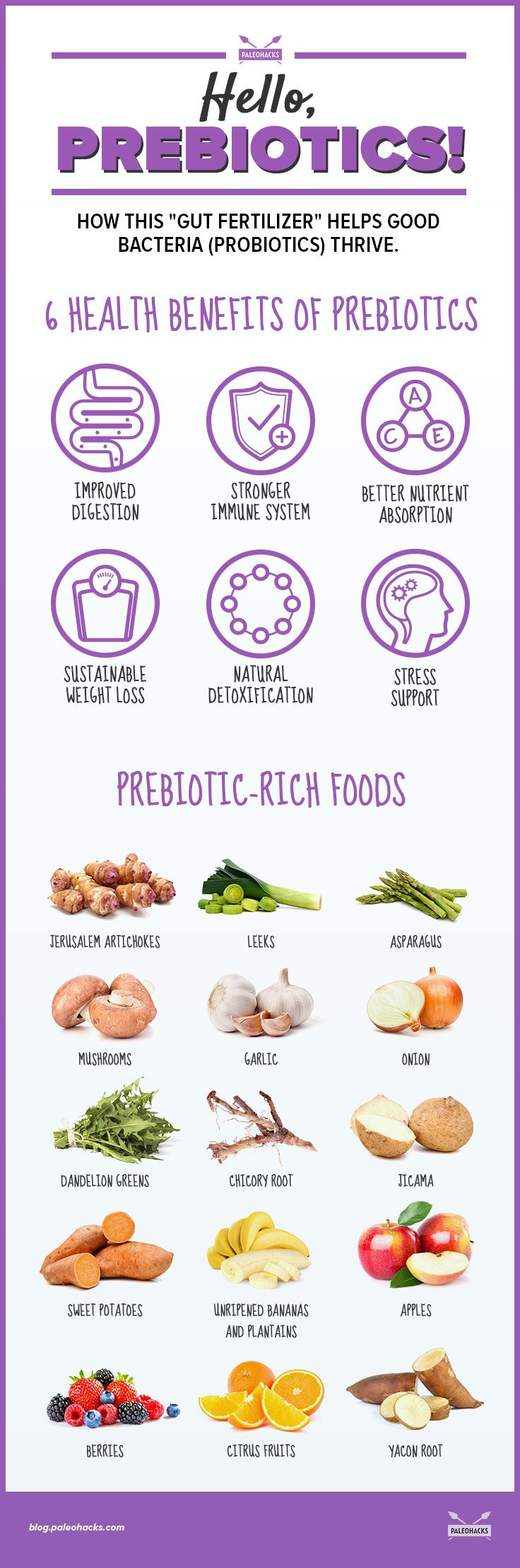 Prebiotics 6 Benefits Of This Gut Fertilizer And