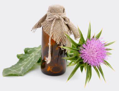 Milk Thistle: Nature's Detox Plant
