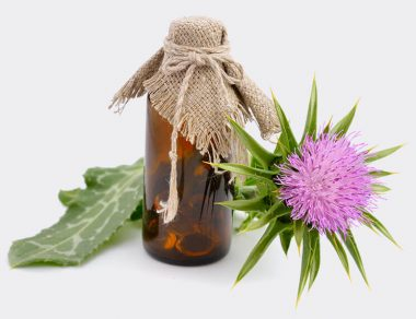 Milk Thistle: Nature's Detox Plant