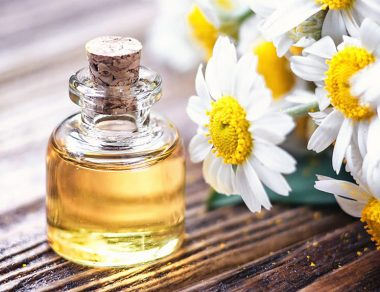 7 Health Benefits of Chamomile Essential Oil & How to Use It