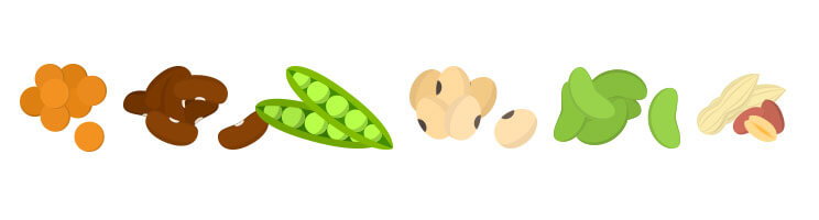 6-legumes.jpg