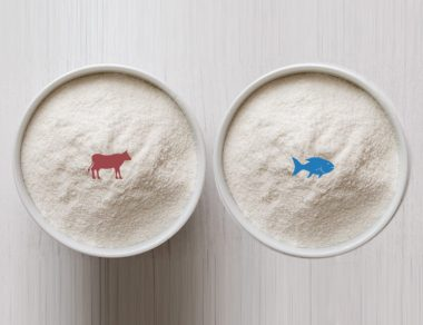 Bovine Collagen vs. Marine Collagen: The Difference and Useful Tips