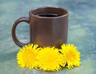 Don't Weed 'Em Out: The Natural Health Benefits of Dandelions