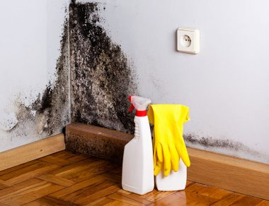 Black Mold: 4 Signs It's In Your Home & How to Get Rid of It