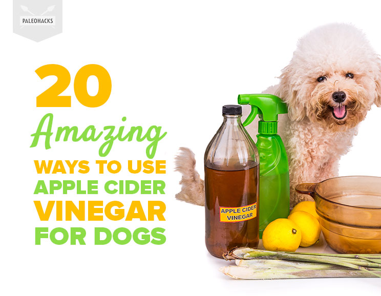 how to use apple cider vinegar for health