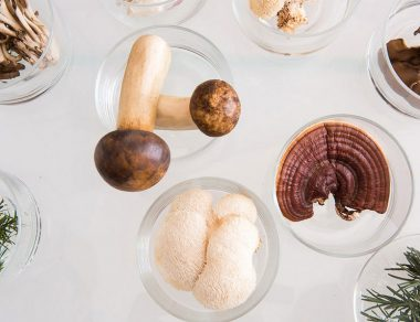 4 Natural Health Benefits of Medicinal Mushrooms and How to Use Them