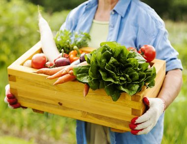 Organic vs. Conventional Food: Here's The Real Difference