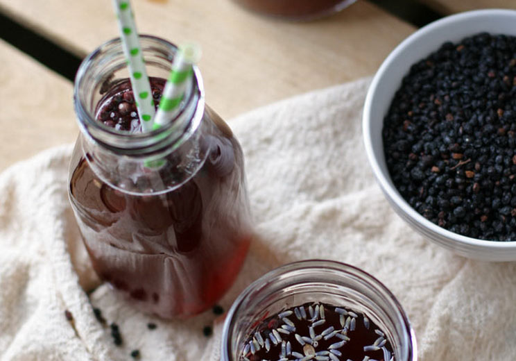 Homemade-Elderberry-Kombucha.jpg