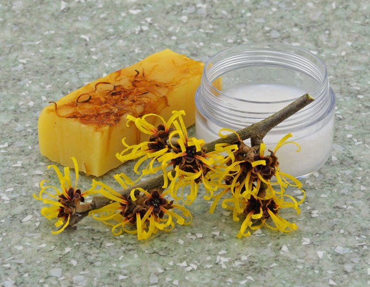 7-Natural-Benefits-of-Witch-Hazel-How-To-Use-It744.jpg