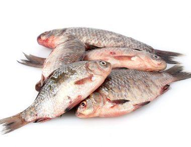 9 Dangers of Eating Raw Fish + How to Spot Anything Fishy