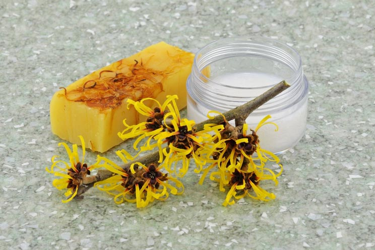 Natural-Witch-Hazel-Products.jpg