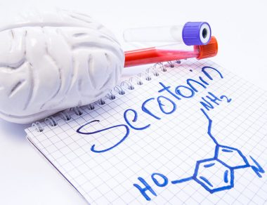 Serotonin and GABA: Inhibitory Neurotransmitters